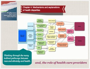 Infographic mechanisms of health disparities